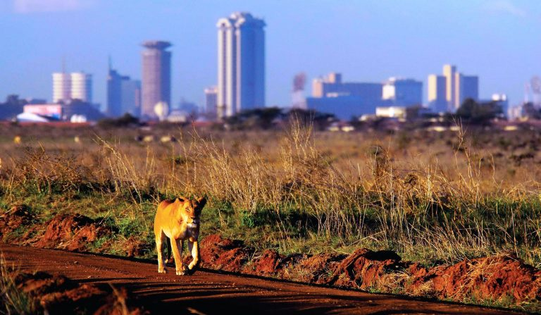 Rough Guides Name Nairobi Third Best City to Visit in 2017