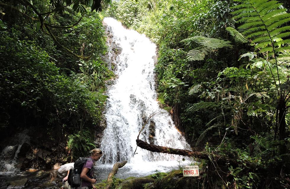 Bwindi Waterfall