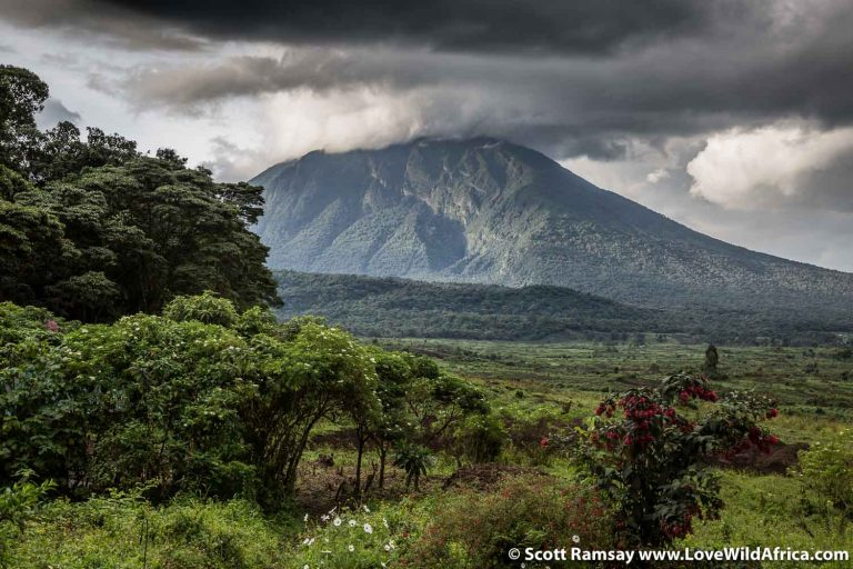 Exploring Virunga National Park