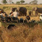 luxury-african-safari-uganda-kenya-rwanda